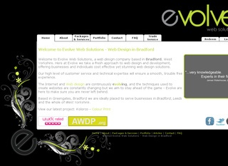 Evolve Web Solutions
