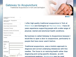Gateway to Acupuncture